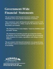 Government-Wide Financial Statements - Auburn School District