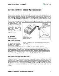 L: Tratamento de Dados Hiperespectrais