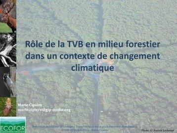 Rôle de la TVB en milieu forestier dans un contexte de changement ...