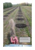 cherry plantation - Gp1.ro - Page 3
