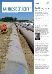 Jahresbericht VSG 2008 - Erdgas