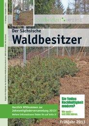 9. Jahrgang Ausgabe 1/2013 - Der Sächsische ...
