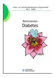 Programarbete Diabetes - Landstinget Västernorrland