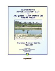 Egyptian Natural Gas Co. (GASCO) - European Investment Bank