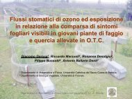 Flussi stomatici di ozono ed esposizione in relazione alla comparsa ...