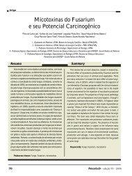 Micotoxinas do Fusarium e seu Potencial Carcinogênico - NewsLab