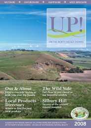 UP! - North Wessex Downs Area of Outstanding Natural Beauty