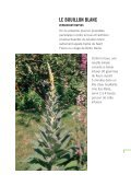Mauvaises herbes, on vous aime - Maison de la Consommation et ... - Page 5