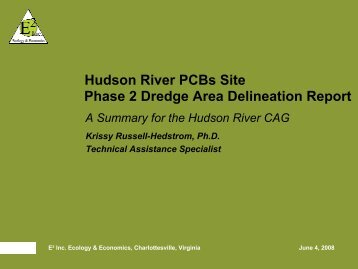 Hudson River PCBs Site Phase 2 Dredge Area Delineation Report