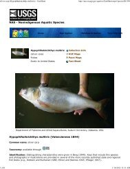 silver carp - New York Invasive Species Information