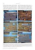 estratigrafía y petrología del subsuelo precuaternario del sector sw ... - Page 4