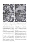 estratigrafía y petrología del subsuelo precuaternario del sector sw ... - Page 6