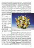 MNR 2006-03.pdf - Missionswerk Mitternachtsruf - Page 3