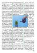 MNR 2006-03.pdf - Missionswerk Mitternachtsruf - Page 5