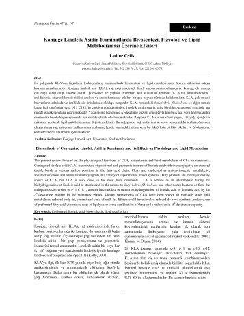 Konjuge Linoleik Asidin Ruminatlarda Biyosentezi, Fizyoloji ve Lipid ...