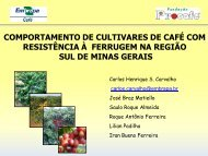 comportamento de cultivares de café com resistência à ferrugem na ...