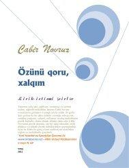 Cabir Novruz - Kitabxana