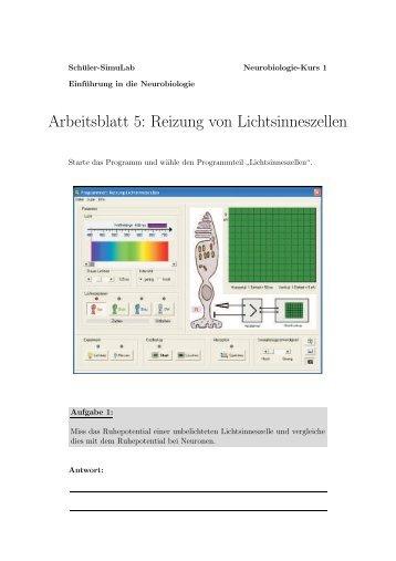 Tolle In Der Klinik Arbeitsblatt Antworten Galerie - Arbeitsblätter ...