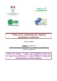 Fiche sur le compostage des végétaux aquatiques et palustres