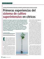 Primeras experiencias del sistema de cultivo superintensivo en cítricos