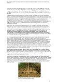Les racines du problème - Critical Information Collective - Page 5