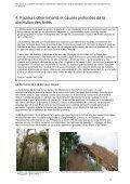 Les racines du problème - Critical Information Collective - Page 7