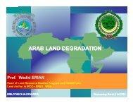 English - Arab Human Development Reports