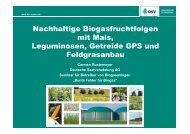 Nachhaltige Biogasfruchtfolgen mit Mais, Leguminosen, Getreide ...
