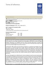 Terms of reference - UNDP