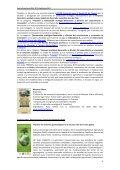 HI e-SEAE n19. 30septiembre12 - Sociedad Española de ... - Page 4