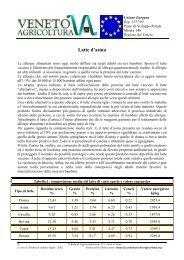 PDF (Latte d'Asina)