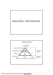 Prednáška DW.pdf