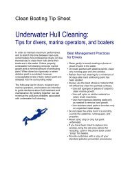 Underwater Hull Cleaning: