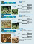 Silent Auction Catalog - Whitetail Deer Farmer - Page 4