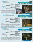 Silent Auction Catalog - Whitetail Deer Farmer - Page 5