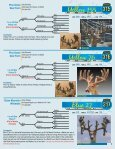 Silent Auction Catalog - Whitetail Deer Farmer - Page 7