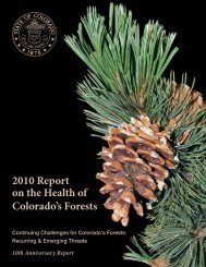 2010 Report on the Health of Colorado's Forests - Colorado State ...