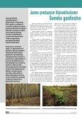 broj 35 - DRVOtehnika - Page 6