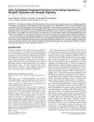 Actin Cytoskeleton-Dependent Dynamics of the Human ... - CCMB
