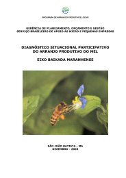 Diagnóstico situacional participativo do arranjo produtivo de mel
