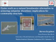 Oyster reefs as a natural breakwater alternative to armoring ...