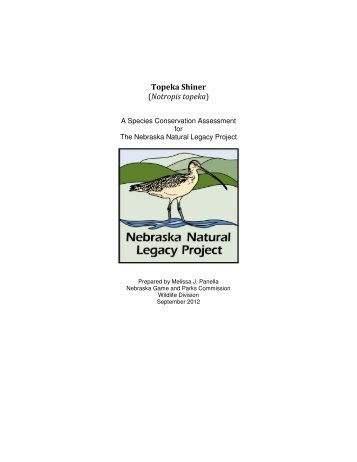 Topeka Shiner - Nebraska Game and Parks Commission - State of ...