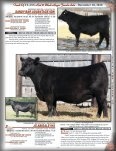 Touch Of Class Red & Black Angus Female Sale - December 10, 2010 - Page 4