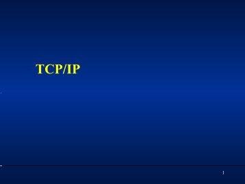 第11回プレゼン資料(PDF)