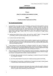 """Piano di Bacino dell'Ambito n° 4 """"Argentina"""" 1 CAPITOLO 6 ..."""