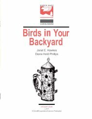 Birds Your Backyard - Department of Natural Resources - Cornell ...