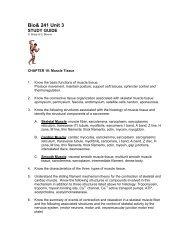 Bio 241 Unit 3 Study Guide