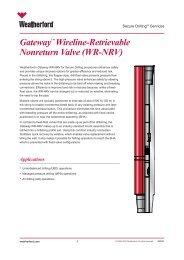 """Gatewayâ""""¢ Wireline-Retrievable Nonreturn Valve (WR-NRV) -A4"""