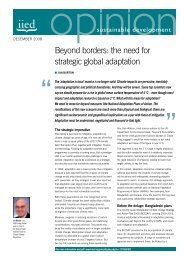 Beyond borders: the need for strategic global adaptation - iied.org ...