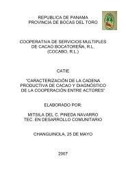Informe final Cadena productiva Panamá - Catie